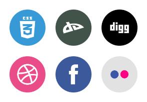 Social icon 1