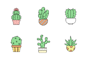 Various cactuses