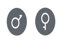 Gender Rounded Solid Set